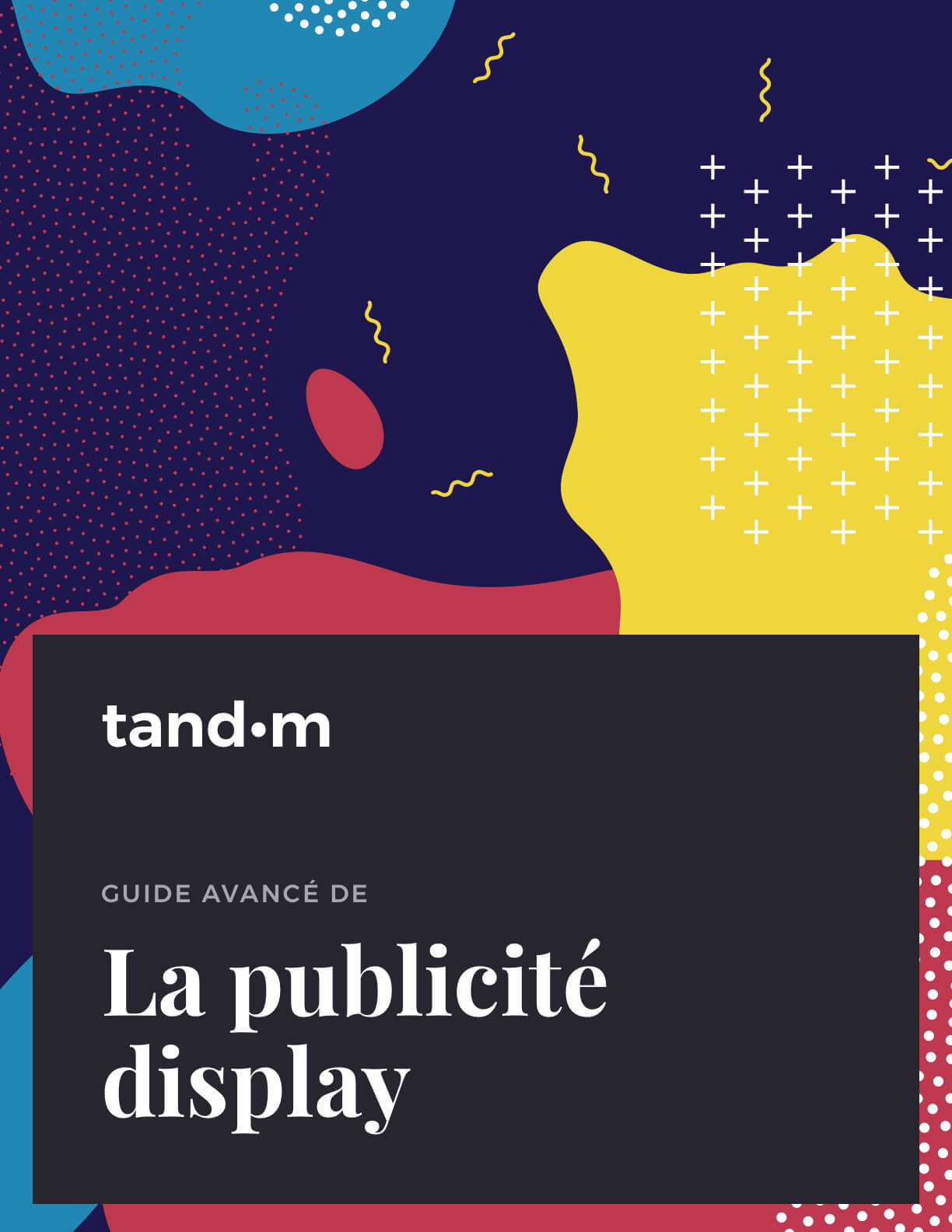Guide avancé de la publicité display
